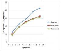 ontario-walleye-length-v-age-graph.jpg