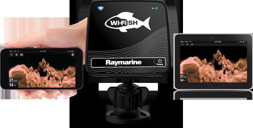 wi-fish-image.png