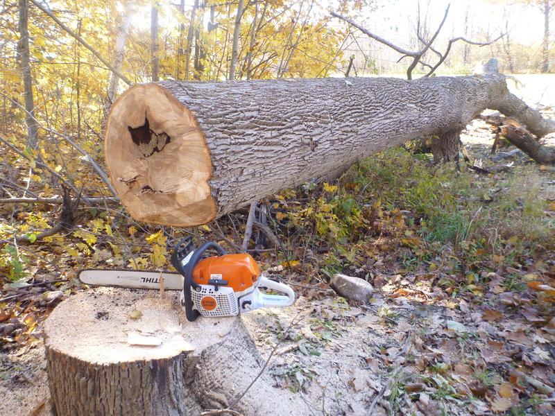 firewood2018 005.JPG