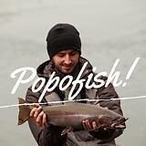 popofish!